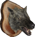 EN-Placeable-Trophy Wolf.png