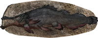 EN-Placeable-Trophy Bonefish.png