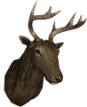 EN-Placeable-Trophy Elk Cow.png
