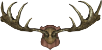 EN-Placeable-Trophy Antlers.png